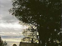 501_05_03-oosthuizen